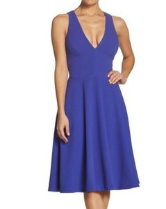 Dress the Population Catalina Fit & Flair Dress
